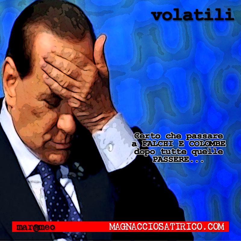 MarcoMengoli-Volatili