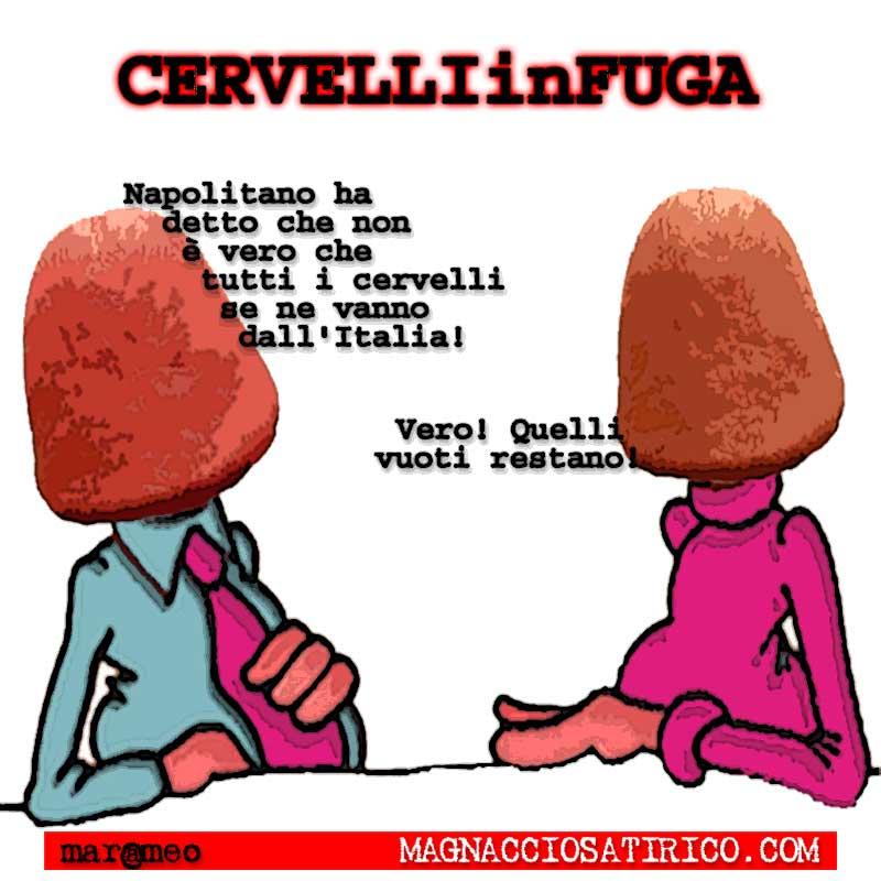 MarcoMengoli-Cervelliinfuga