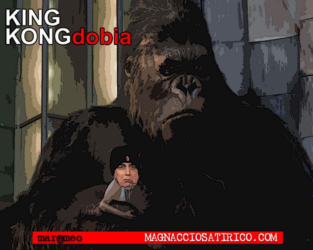 MarcoMengoli-kingkongdobia