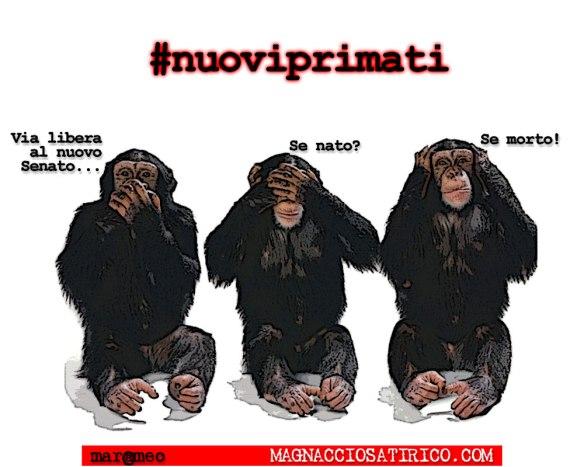 MarcoMengoli-#nuoviprimati